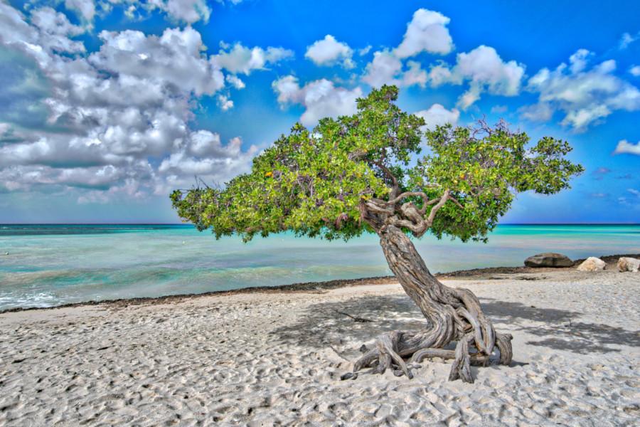 aruba easter holidays my late deals
